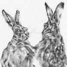 Thumbnail of Boxing Hares 3