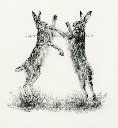Boxing Hares 5