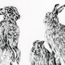 Thumbnail of March Hares