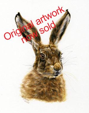 Hare Original 1